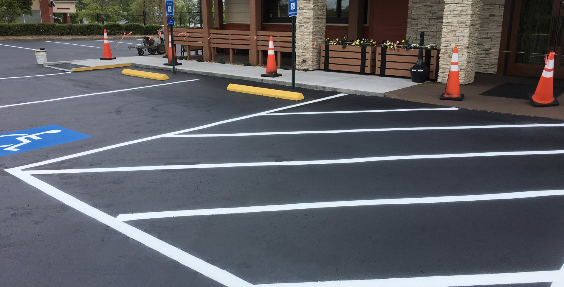 freshly striped parking lot